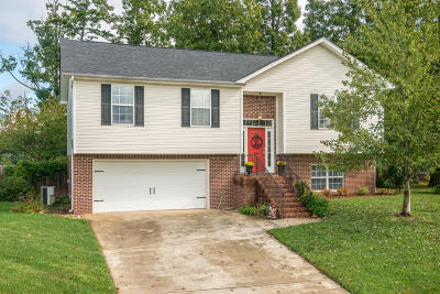 Soddy Daisy Single Family Home For Sale: 9254 Broad Leaf Ln