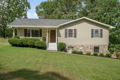 Ooltewah Single Family Home For Sale: 5333 Hunter Village Dr