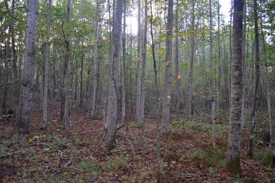 Marion Residential Lots & Land For Sale: 44.32ac C Road