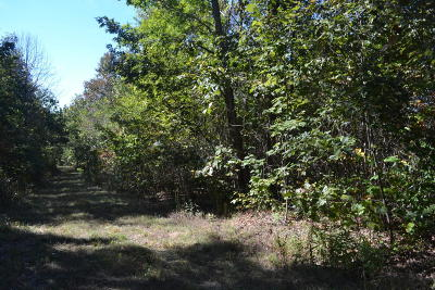 Marion Residential Lots & Land For Sale: 67.54ac C Road