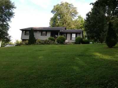 Spring City Single Family Home For Sale: 216 Flynn Drive