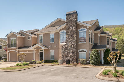Chattanooga Condo For Sale: 107 Renaissance Ct
