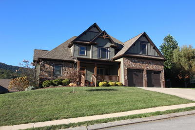 Hixson Single Family Home For Sale: 5879 Sunset Canyon Dr