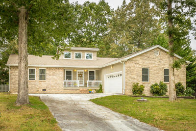 Ooltewah Single Family Home For Sale: 6913 Spinmaker