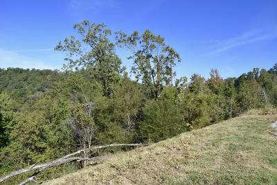 Chattanooga Residential Lots & Land For Sale: Meroney St