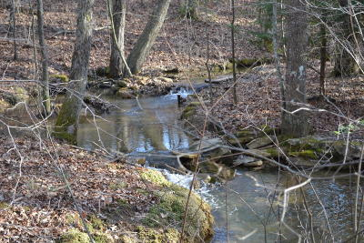 Marion Residential Lots & Land For Sale: 1345 Gizzard Creek Rd