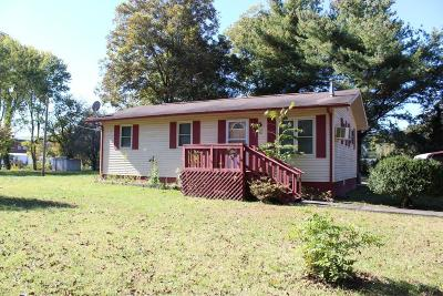Spring City Single Family Home For Sale: 321 Hilleary St