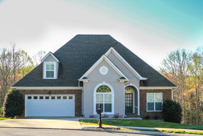 Ooltewah Single Family Home For Sale: 9524 Salisbury Ln
