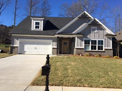 Hixson Single Family Home For Sale: 563 Deer Valley Dr #9
