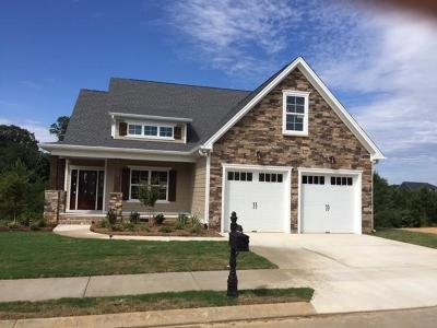 Chattanooga Single Family Home For Sale: 4761 Preserve Dr #Lot 21
