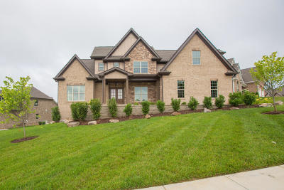 Ooltewah Single Family Home For Sale: 3161 Whistling Way