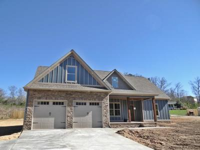 Ringgold Single Family Home For Sale: 1145 Baggett Rd