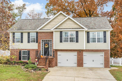 Ringgold Single Family Home For Sale: 93 Fieldstone Dr