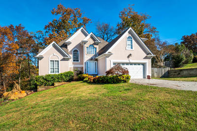 Chattanooga Single Family Home For Sale: 8949 Chaffin Ln