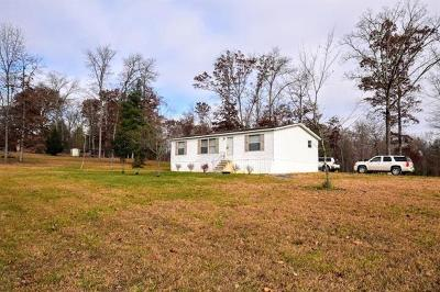 Spring City Single Family Home For Sale: 106 Swafford Rd