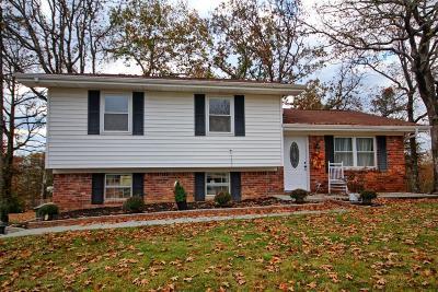 Hixson Single Family Home For Sale: 312 Branchwood Cir