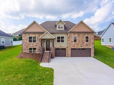 Ringgold Single Family Home For Sale: 107 Angel Oak Way #115