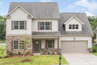 Ooltewah Single Family Home For Sale: 9747 Haven Port Ln #47