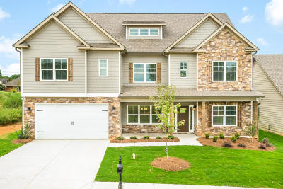 Ooltewah Single Family Home For Sale: 9726 Haven Port Ln #5