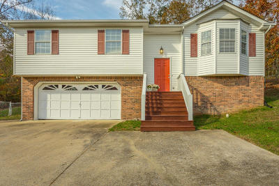 Ringgold Single Family Home For Sale: 451 Hickory Dr