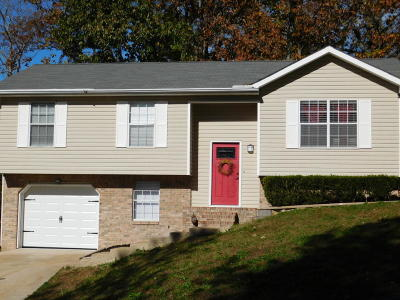 Ringgold Single Family Home For Sale: 99 Campbell Cir