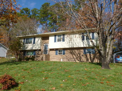 Hixson Single Family Home Contingent: 1307 Thrasher Pike