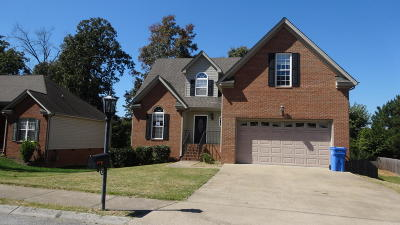 Chattanooga Single Family Home For Sale: 8381 Lady Slipper Rd