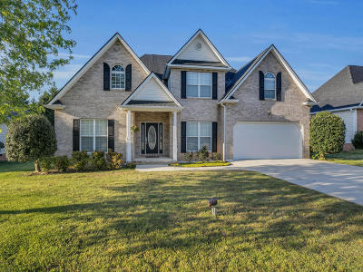 Ringgold Single Family Home For Sale: 186 Rock Creek Tr