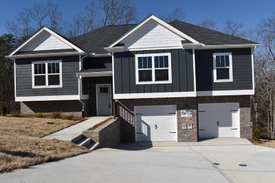 Ooltewah Single Family Home For Sale: 7419 Pfizer Dr #1219