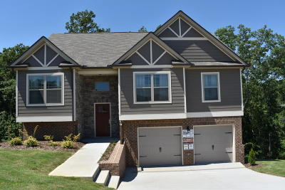 Ooltewah Single Family Home For Sale: 7411 Pfizer Dr #1220