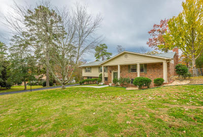 Chattanooga Single Family Home For Sale: 1725 Skyline Dr