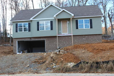 Ooltewah Single Family Home Contingent: 7593 Gawain Path #85