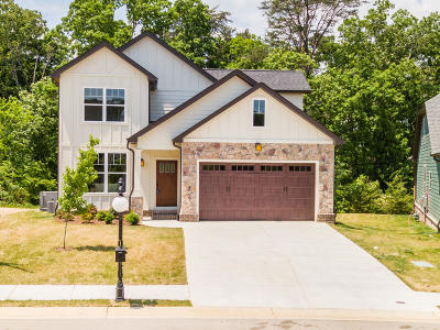 Chattanooga Single Family Home For Sale: 4261 Inlet Loop #Lot #37