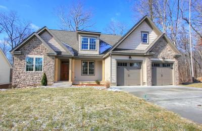 Apison Single Family Home Contingent: 9452 Peppy Branch Tr #Lot 173