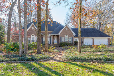Chattanooga Single Family Home For Sale: 726 Morning Shadows Drive