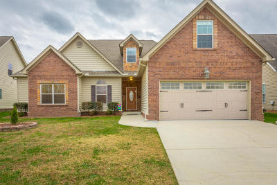 Ooltewah Single Family Home For Sale: 8484 Lexie Ln
