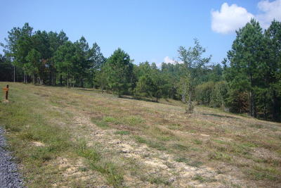 Marion Residential Lots & Land For Sale: O River Bluffs Dr #160