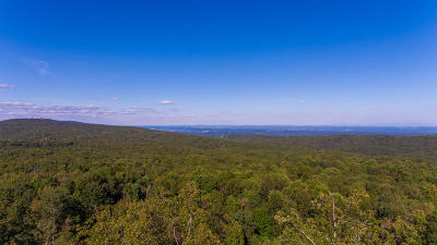 Lookout Mountain Residential Lots & Land For Sale: Lookout Crest Ln #4