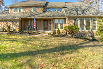 Chattanooga Single Family Home For Sale: 527 Picture Ridge Dr