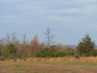 Marion Residential Lots & Land For Sale: 2075 Lower Fire Tower Rd