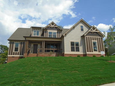 Ooltewah Single Family Home For Sale: 8824 Springhouse Ct #Lot #56