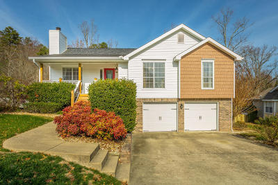 Ooltewah Single Family Home For Sale: 6124 Caleb Pl