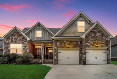 Ooltewah Single Family Home For Sale: 8253 Robertsview Dr