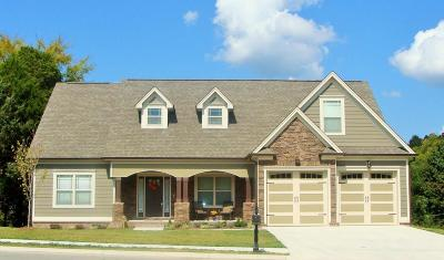 Ooltewah Single Family Home For Sale: 8599 Skybrook Dr