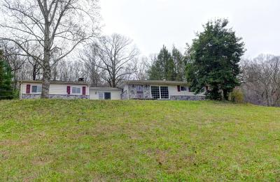 Spring City Single Family Home For Sale: 25744 Rhea County Hwy