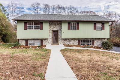 Chattanooga Single Family Home For Sale: 6314 Celtic Dr