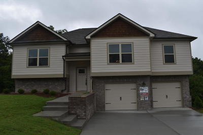 Soddy Daisy Single Family Home For Sale: 1047 Longo Dr #60