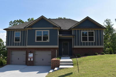 Soddy Daisy Single Family Home For Sale: 1044 Longo Dr #68