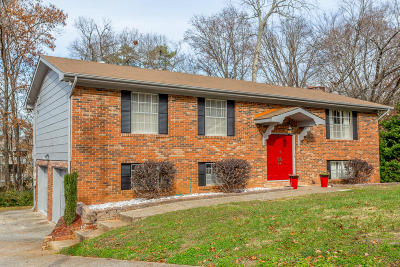 Chattanooga Single Family Home Contingent: 2938 Old Britain Cir
