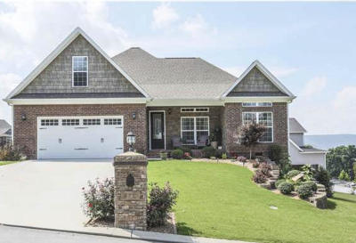 Soddy Daisy Single Family Home For Sale: 610 Sunset Valley Dr